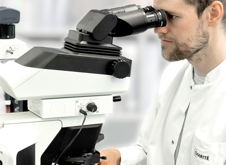 Pathologie Charite