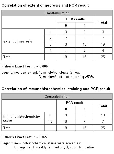 Histological evaluation and PCR results for M. tuberculosis